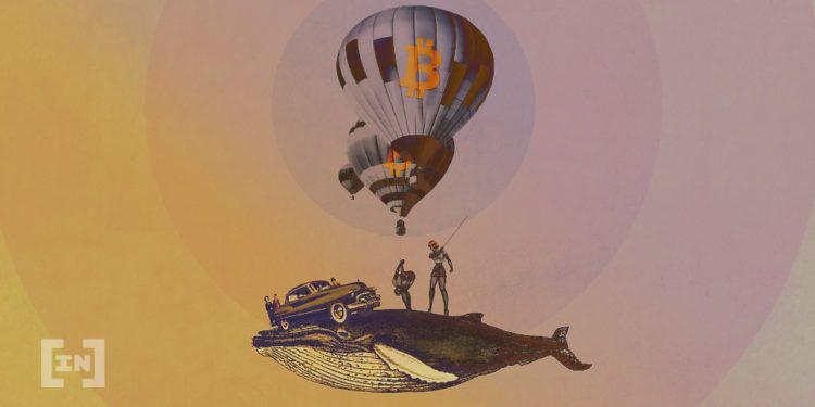 Bitcoin wieloryby | beincrypto.pl