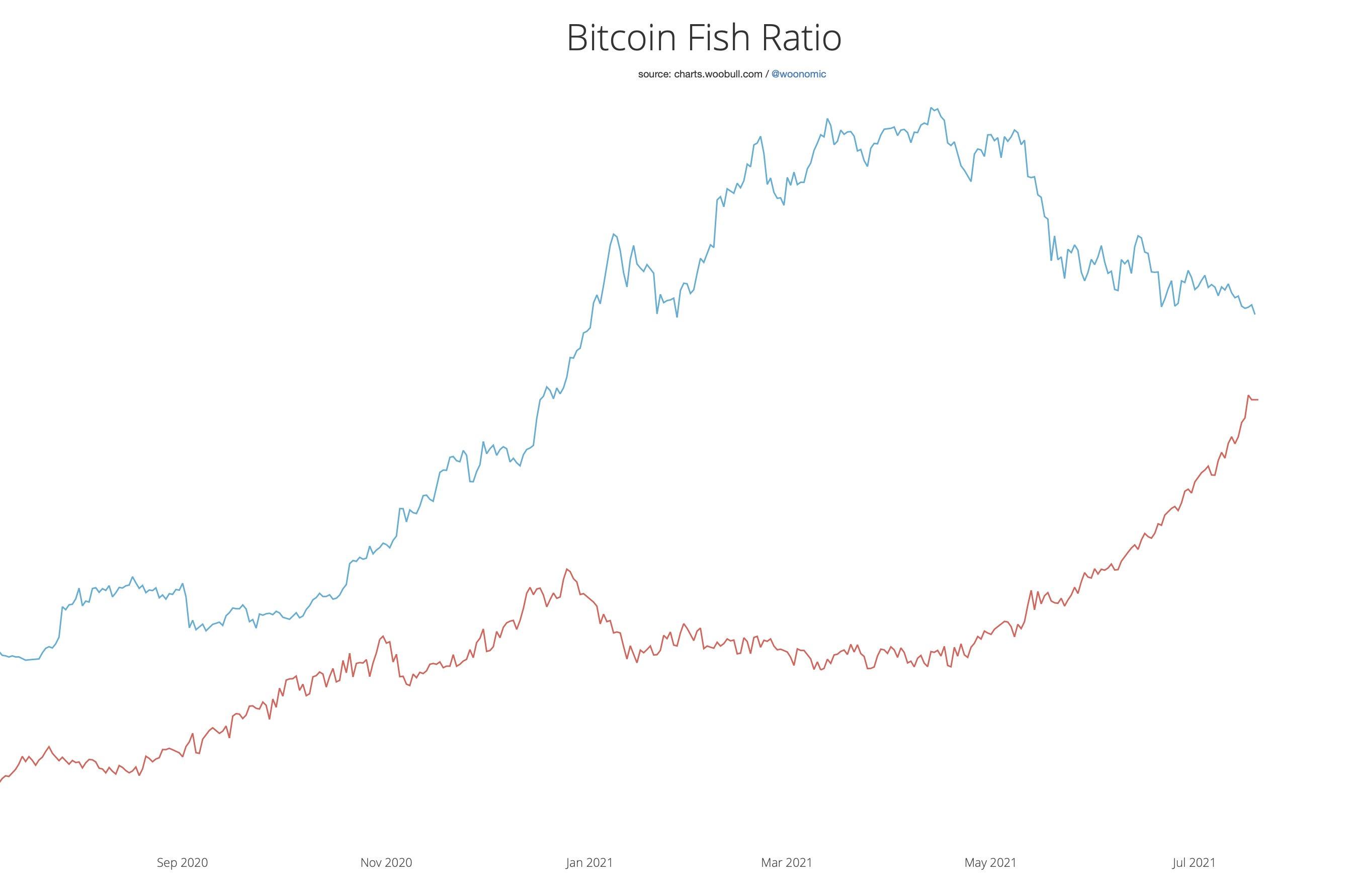 FXMAG kryptowaluty analiza on-chain: wieloryby i płotki kupują na trwających spadkach rynki,analiza on-chain,bitcoin (btc),wieloryby,will clemente,willy woo,wiadomości,informacje 3